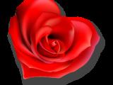 s.valentino_sconti